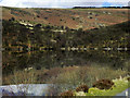 SN9165 : Elan Valley, Garreg-ddu Reservoir by David Dixon