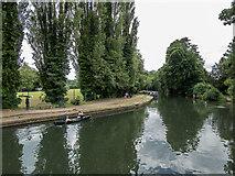 TL3514 : River Lea, Ware, Hertfordshire by Christine Matthews
