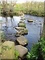 SE2060 : Stepping  Stones  over  River  Nidd  (2) by Martin Dawes