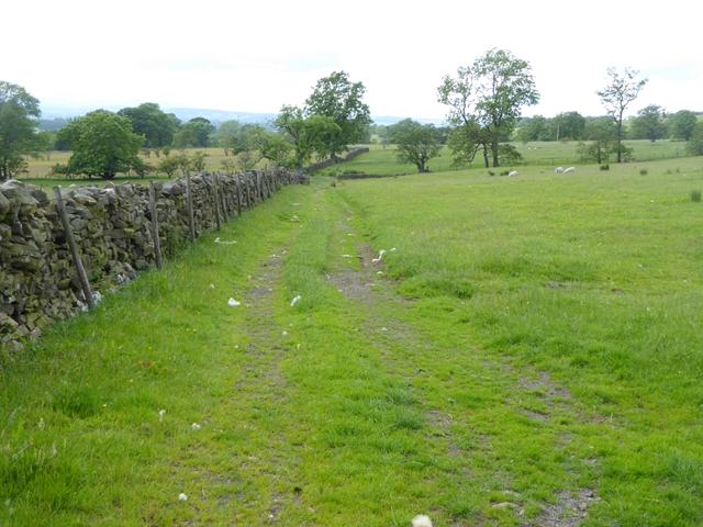 Fields near Knock