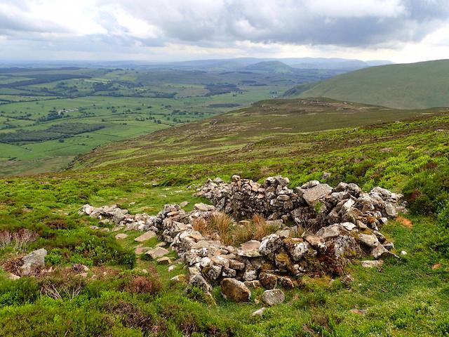 Ruined sheepfold