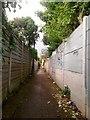 SZ0994 : Moordown: graffiti on footpath M01 by Chris Downer