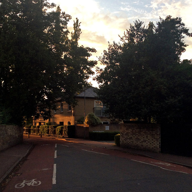 Evening light, Gresham Road