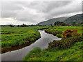 NY3634 : River Caldew by Mick Garratt
