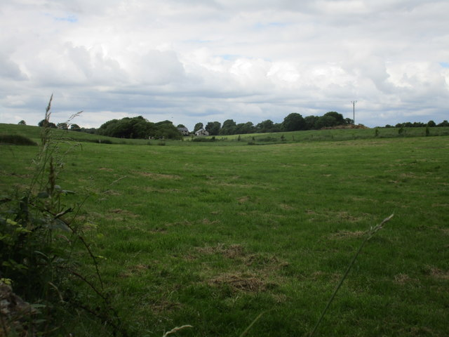 Grassland at Aghern