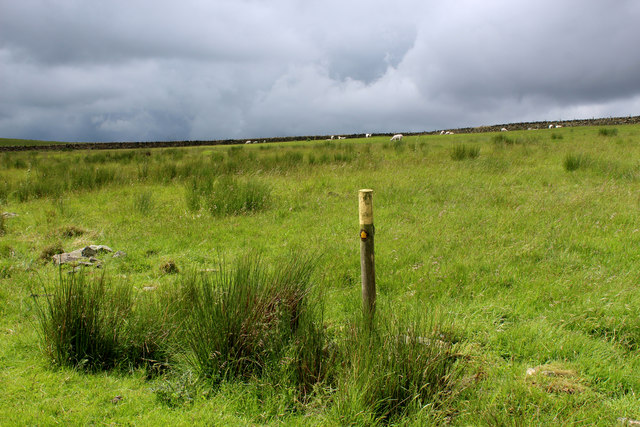 Public Footpath on Rough Pasture, Heptonstall Moor