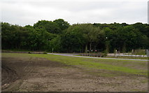 SE2436 : New grass, Kirkstall Forge by Rich Tea