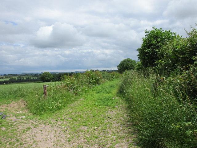 Field entrance and farm track near Britway