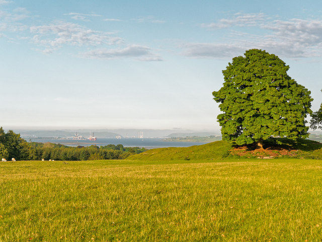 Field overlooking the Cromarty Firth