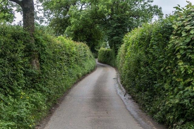 Stanton Lane