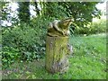 SJ8542 : Ferndown LNR: frog carving by Jonathan Hutchins