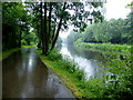 H4772 : Wet along the Camowen River by Kenneth  Allen