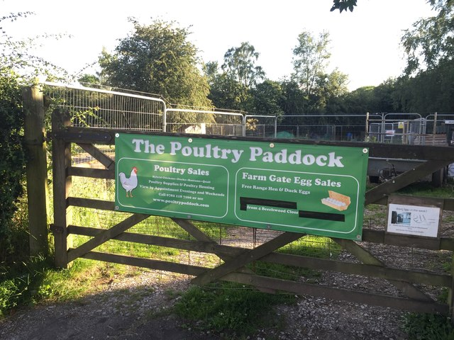 Clayton: The Poultry Paddock
