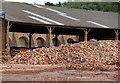 TL2497 : King's Dyke Brickworks by Alan Murray-Rust