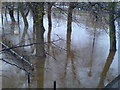 SE6051 : Flooded riverside path by Schlosser67