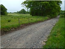 NS3478 : Track to Barrs Road by Lairich Rig