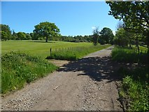 NS3478 : Path to Cardross Road by Lairich Rig