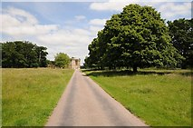 SJ5409 : Driveway approaching Attingham Hall by Philip Halling