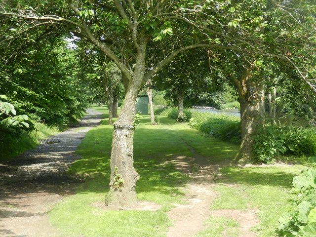 Riverside path at Hawick
