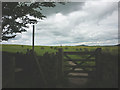 NY8471 : Gate on the Hadrian's Wall Trail, Carraw by Karl and Ali