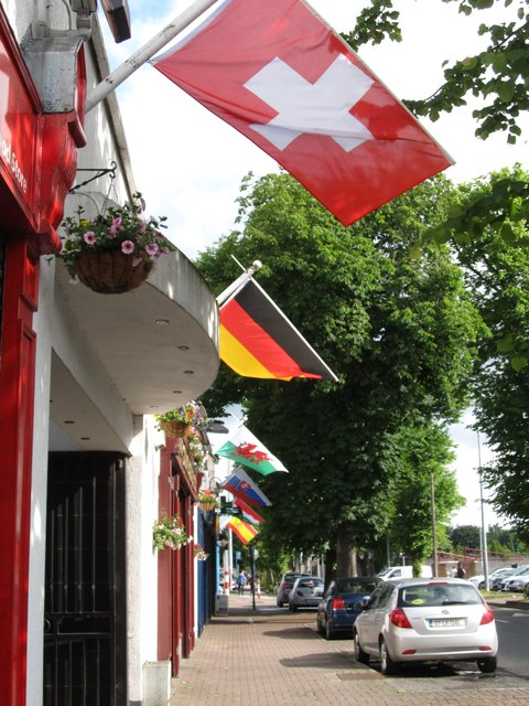 Euro 2016 participant flags on The Long Walk
