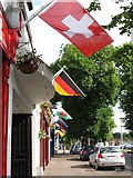 J0407 : Euro 2016 participant flags on The Long Walk by Eric Jones