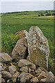 NJ9324 : Hill of Fiddes Recumbent Stone Circle (4) by Anne Burgess