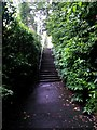 SZ0791 : Westbourne: up the steps on footpath A09 by Chris Downer