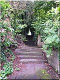 SZ0791 : Westbourne: skew-whiff steps on footpath A10 by Chris Downer