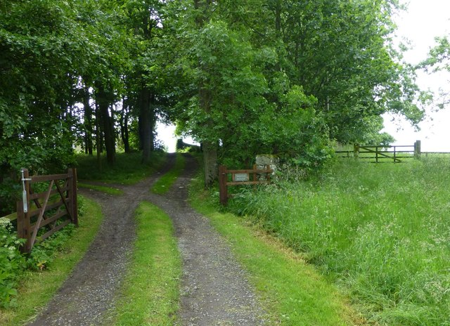 Driveway to Saugh House