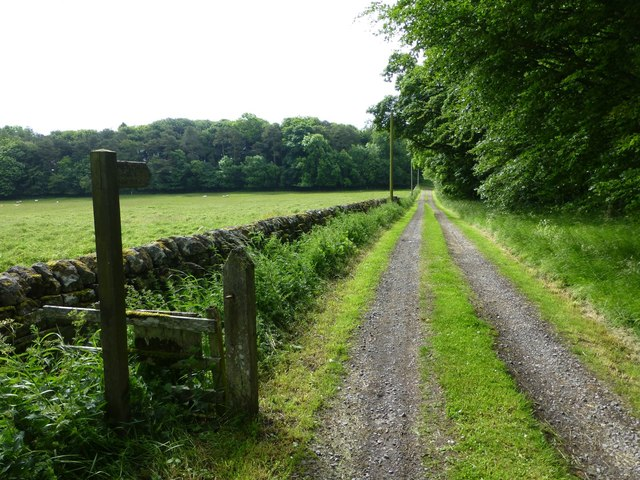 Public footpath to Cambo and Prior Hall