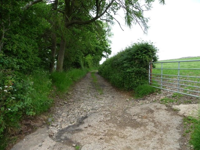 Track to disused quarries, north of Uldale