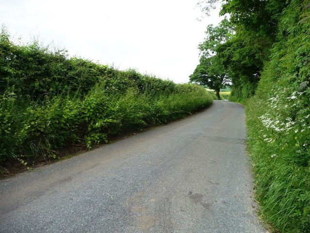 The Uldale to Ireby road, alongside spring-fed trees