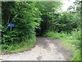 TQ8958 : Unnamed lane leading into Trundle Wood by Chris Whippet