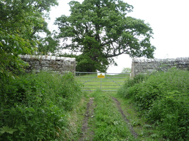 Gated field entrance near Hepburn Bastle