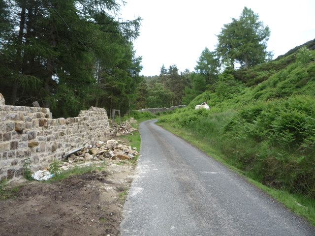 Repairs to stone wall, Chillingham Park