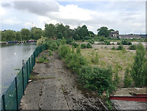 TL1998 : Cleared land by the River Nene, Peterborough by Robin Stott