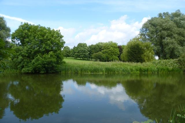 Looking across the River Nene