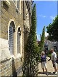 TR3752 : The Landmark Garden, Deal by pam fray