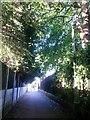 SZ0992 : Malmesbury Park: lamppost on footpath C16 by Chris Downer