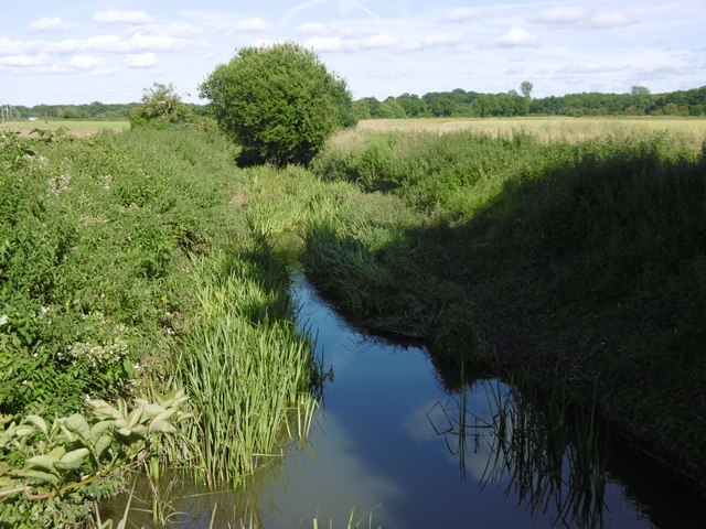 The River Bourne at Little Mill