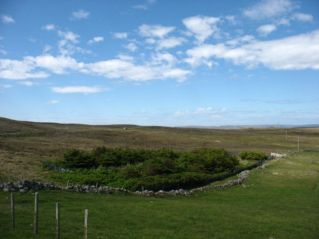 Country near Skaw, Whalsay