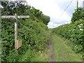 SY2690 : Footpath sign on Barn Close Lane by David Smith
