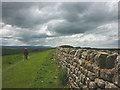 NY7969 : Heading along the Hadrian's Wall Trail by Karl and Ali