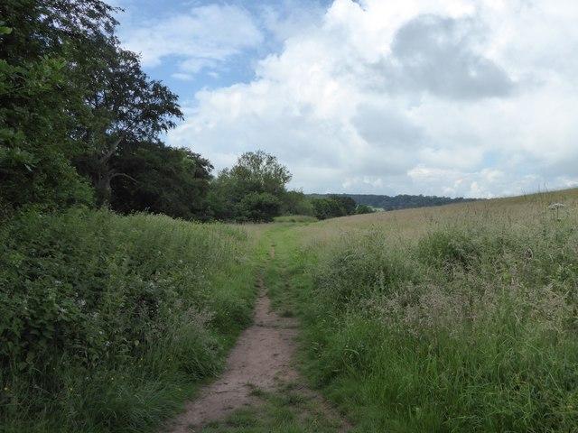 Path below Rowley Wood