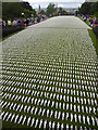SX9293 : 19240 Shrouds of the Somme, Northernhay Gardens, Exeter by Chris Allen