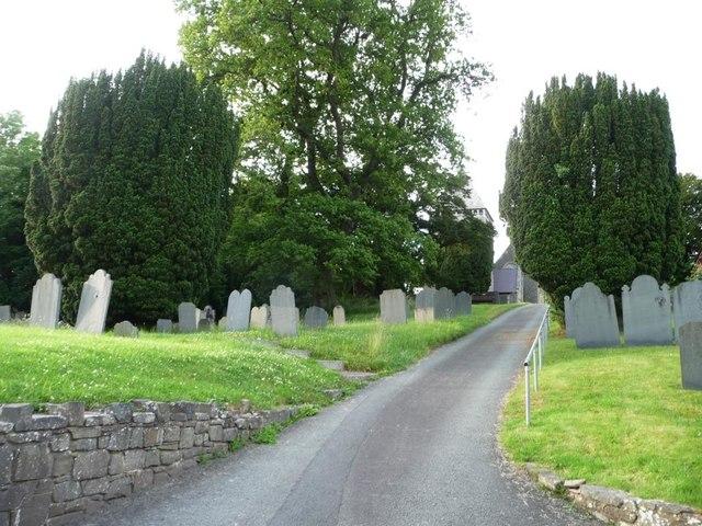Yew trees in the churchyard, Llandinam