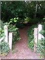 SZ0793 : Talbot Village: footpath N41 enters the woods by Chris Downer