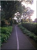 SZ0795 : East Howe: approaching Green Lane from Heather Road on footpath U39 by Chris Downer