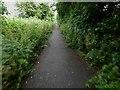 TA1030 : Hornsea Rail Trail #1 by Steve  Fareham